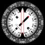 icon Compass PRO