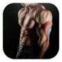 icon Bodybuilding & Fitness Workout